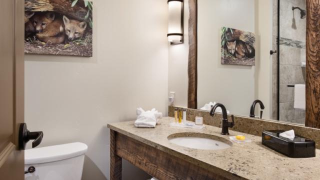 kalispell builder country inn bathroom