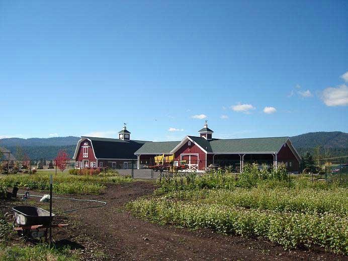 montana dream ranch garden